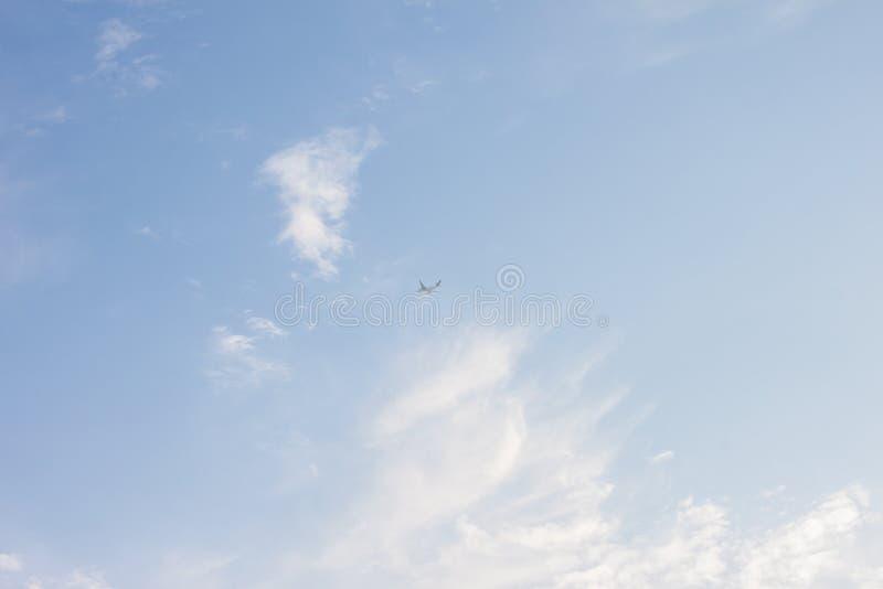 Flygplan på himlen royaltyfri bild
