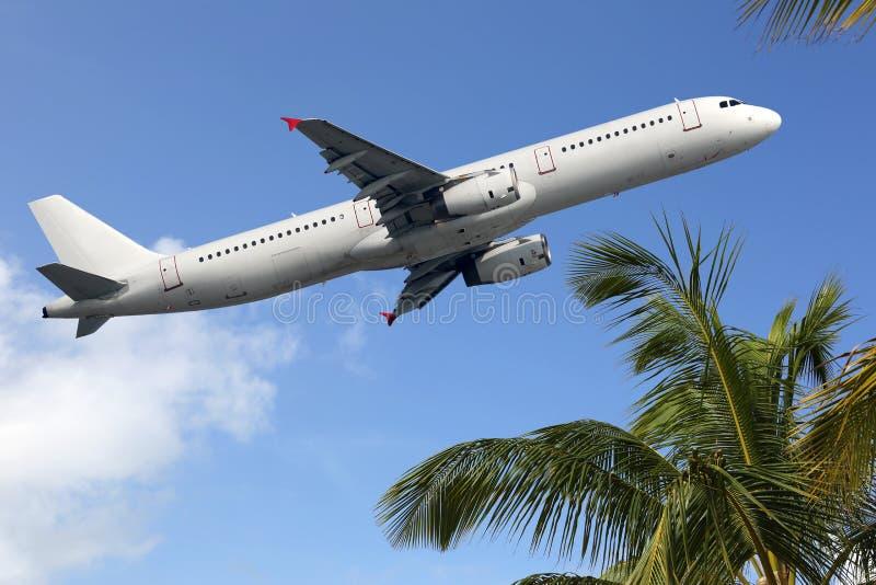 Flygplan som tar av mellan palmträd royaltyfri foto