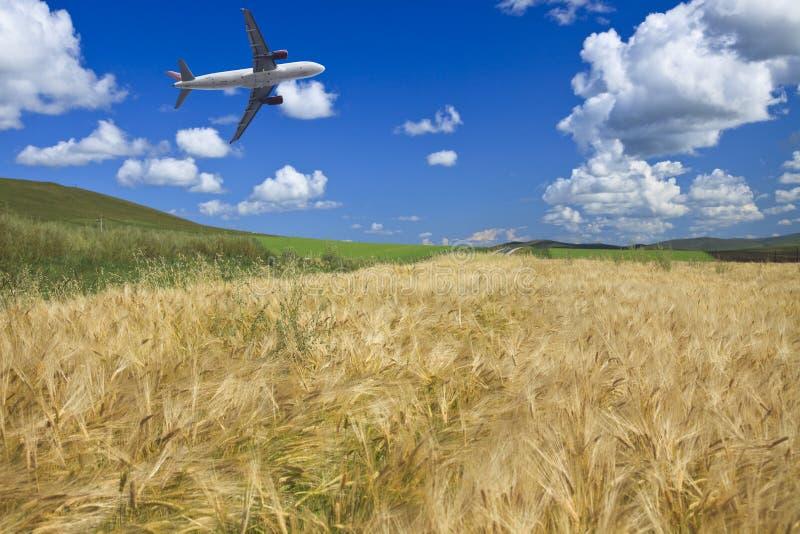 flygplanfältvete fotografering för bildbyråer