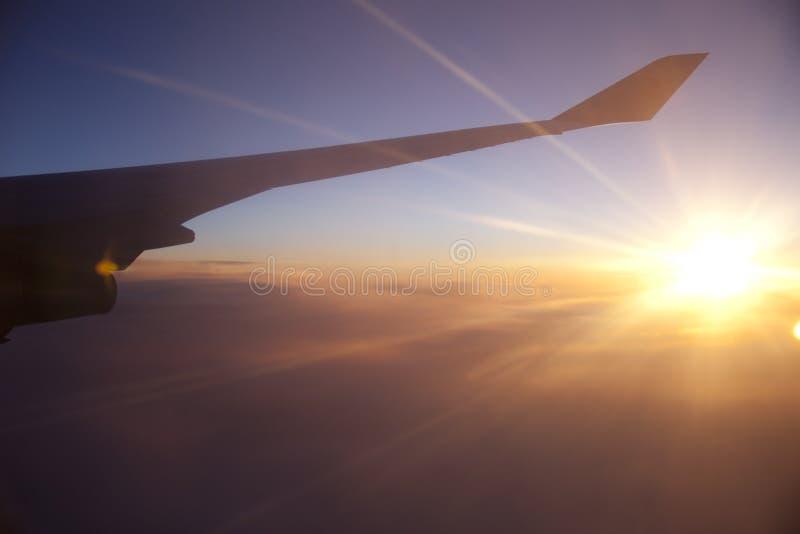 Flygplanvinge på solnedgånghimmel royaltyfri bild