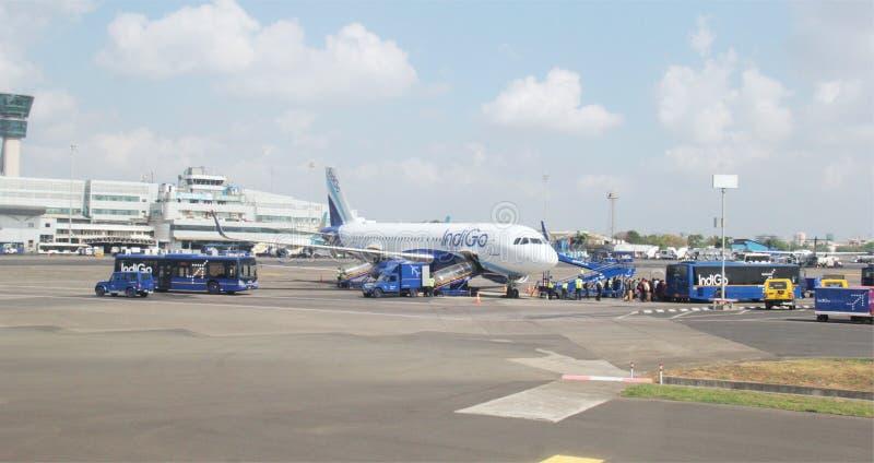 Flygplatsjordoperationer royaltyfria foton