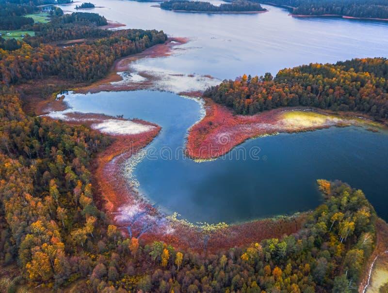 Flygvyn över sjön med kapslar och böjningar royaltyfri bild