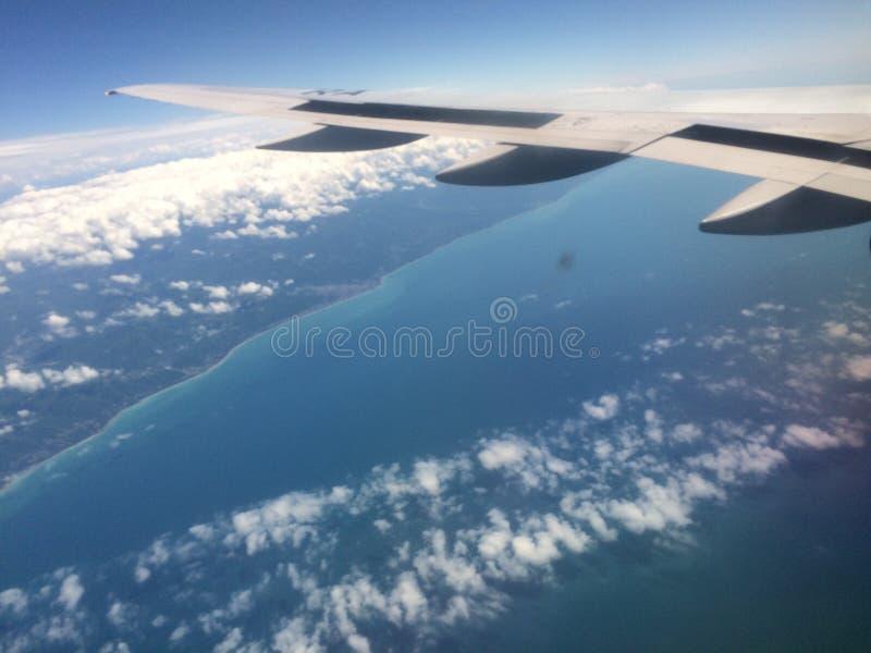 flying stock foto's