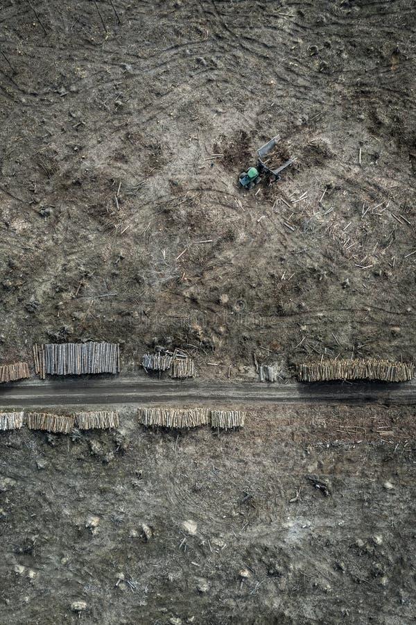 Flying above horrible deforestation forest for harvesting, Poland. Europe stock photos