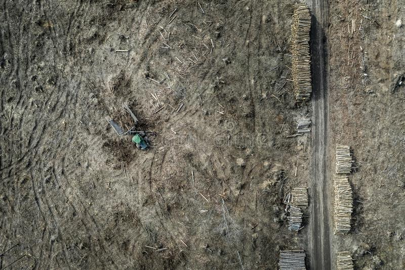 Flying above horrible deforestation. harvesting a forest. Europe royalty free stock photo