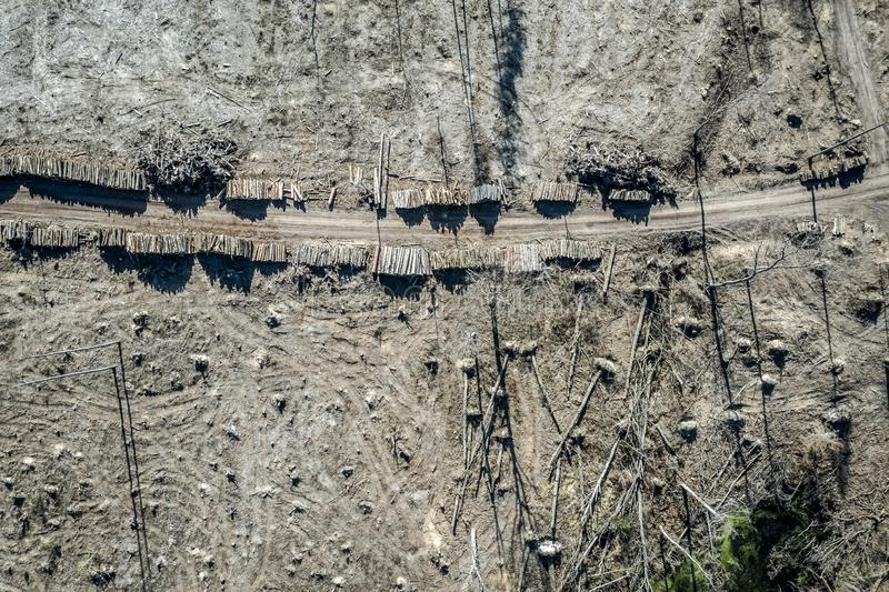 Flying above horrible deforestation, logging, environmental destruction. Europe stock photo