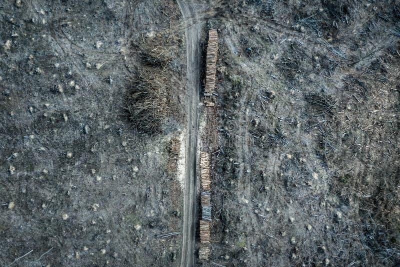 Flying above terrible deforestation, logging, environmental destruction. Europe royalty free stock photography