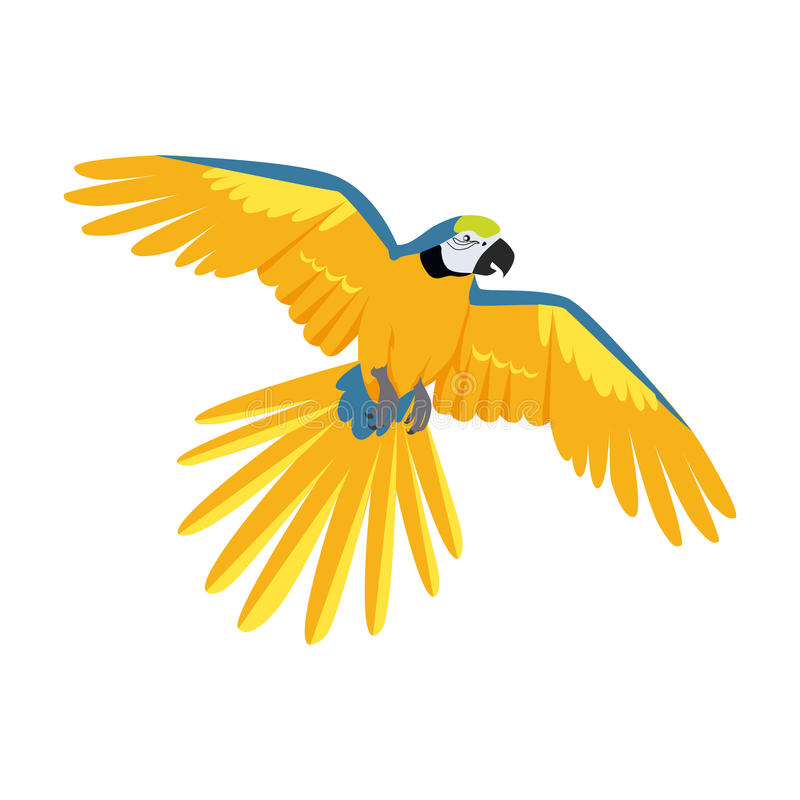 Flying Ara Parrot Flat Design Vector Illustration stock illustration