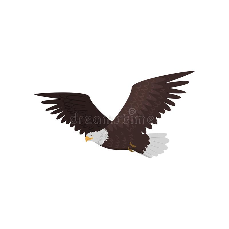 Flying bald eagle with large wings isolated on white background vector illustration