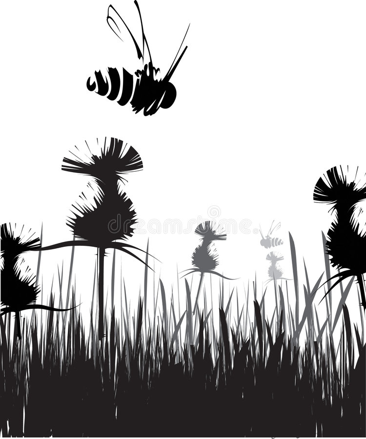 Flying bee. Black and white nature vector composition