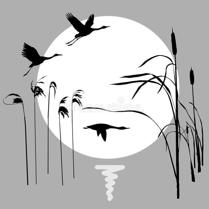 Flying birds. Vector drawing flying birds on background sun stock illustration