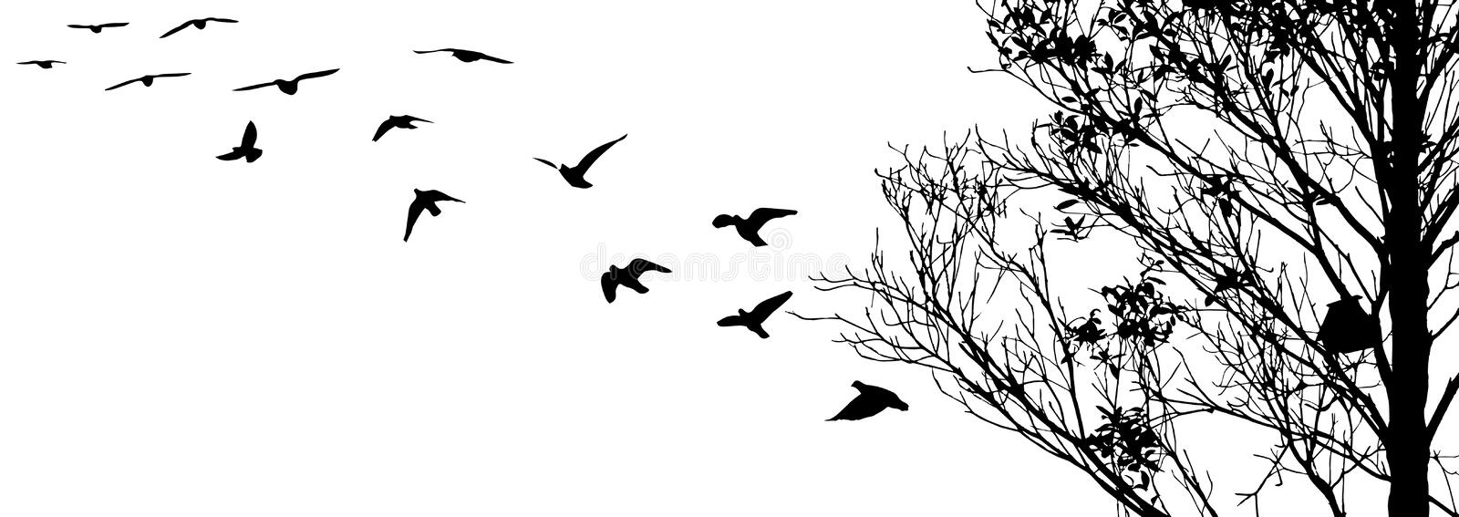 Flying birds and branch silhouettes on white background royalty free illustration