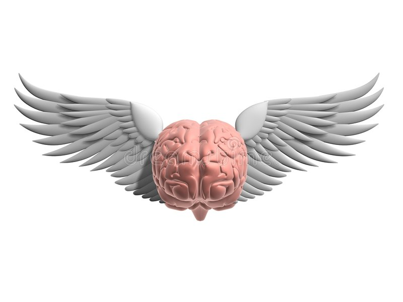 Download Flying brain stock illustration. Image of intellect, human - 1777294