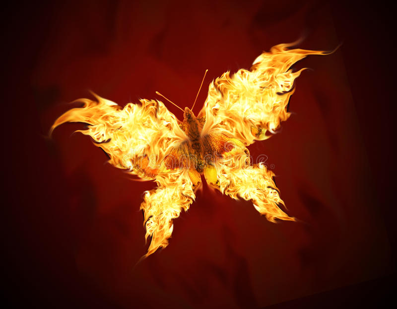 Flying butterfly. With fiery wings stock illustration
