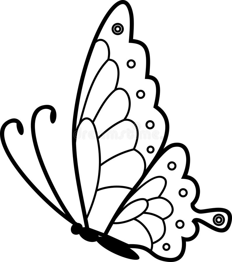Flying Butterfly Coloring Page Stock Vector Illustration Of Butterfly Coloring 120194882