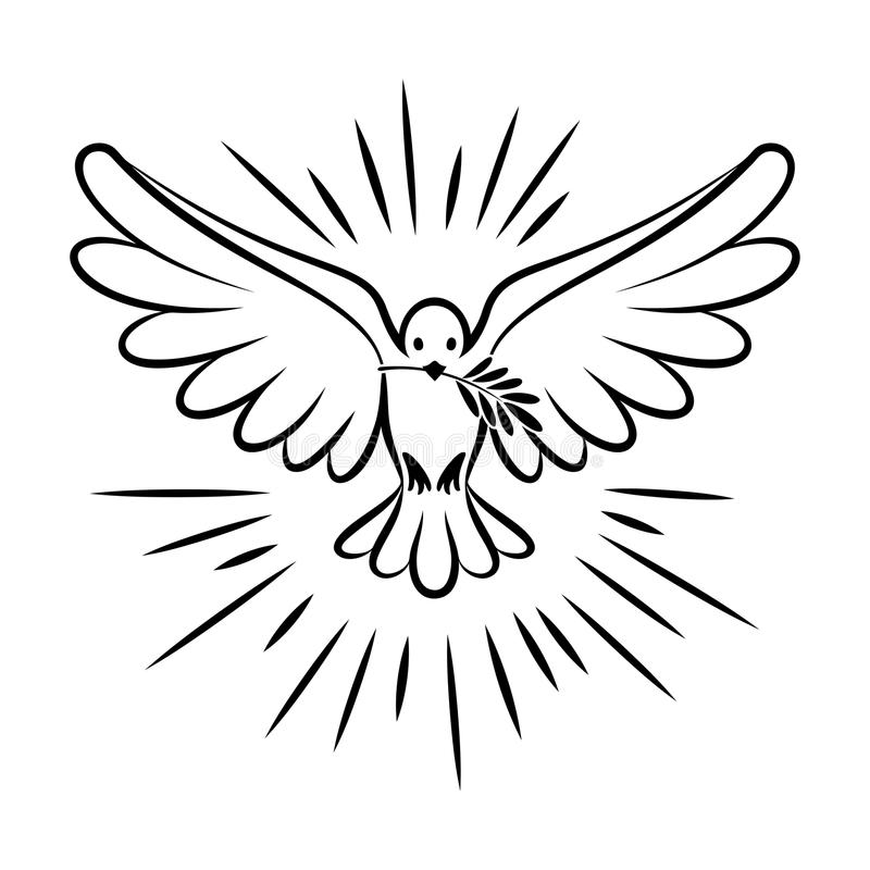 Flying dove vector sketch. Dove of Peace. royalty free illustration
