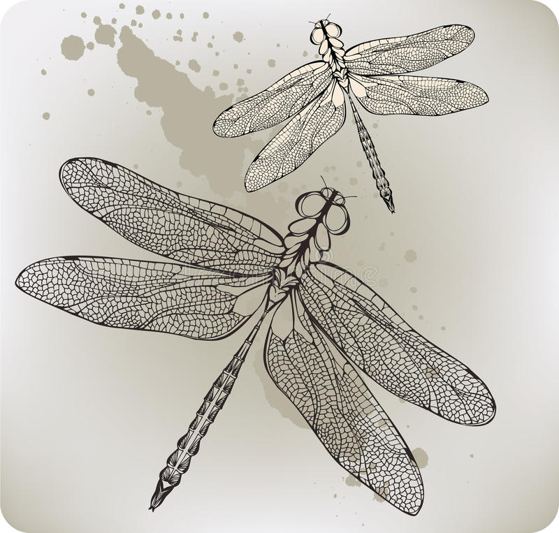 Free Flying Dragonfly, Hand-drawing. Vector Illustratio Royalty Free Stock Photos - 23465298