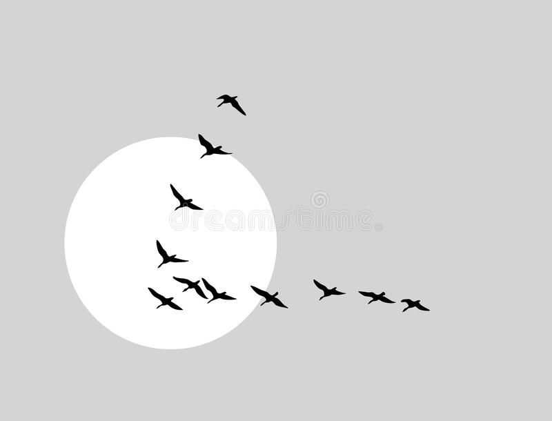 Download Flying Ducks Silhouette Stock Photos - Image: 23031003
