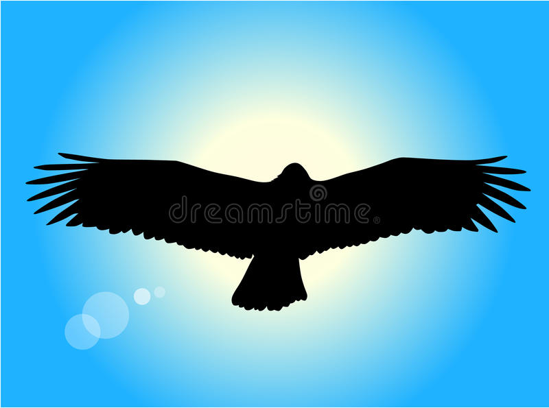 Download Flying eagle stock vector. Illustration of painting, hawk - 15456187