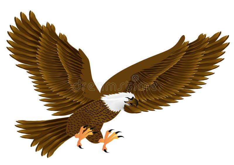 Flying eagle royalty free illustration