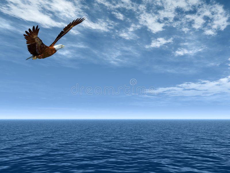 Flying eagle. Eagle flying above the sea on a background of the dark blue sky royalty free illustration