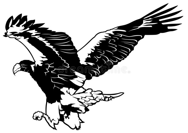 Vector Flying Eagle Stock Illustrations – 8,172 Vector