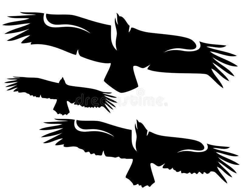 Flying eagles set stock vector. Illustration of clip ...