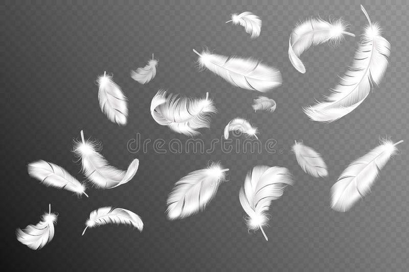 Flying feathers. Falling twirled fluffy realistic white swan, dove or angel wings feather flow, soft birds plumage. Vector silhouette drawing  object collection stock illustration