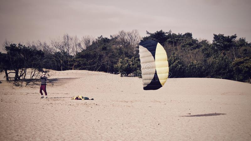 Flying, Forest, Kite stock images