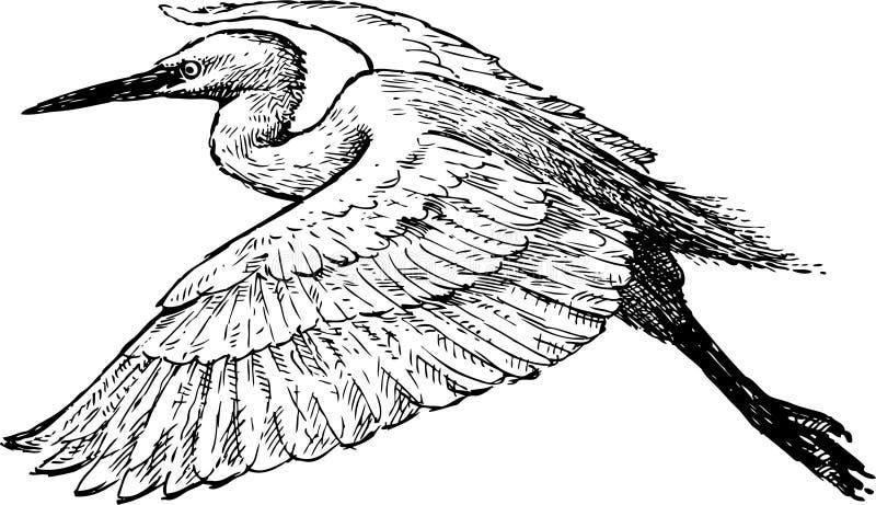 Flying heron royalty free stock photos