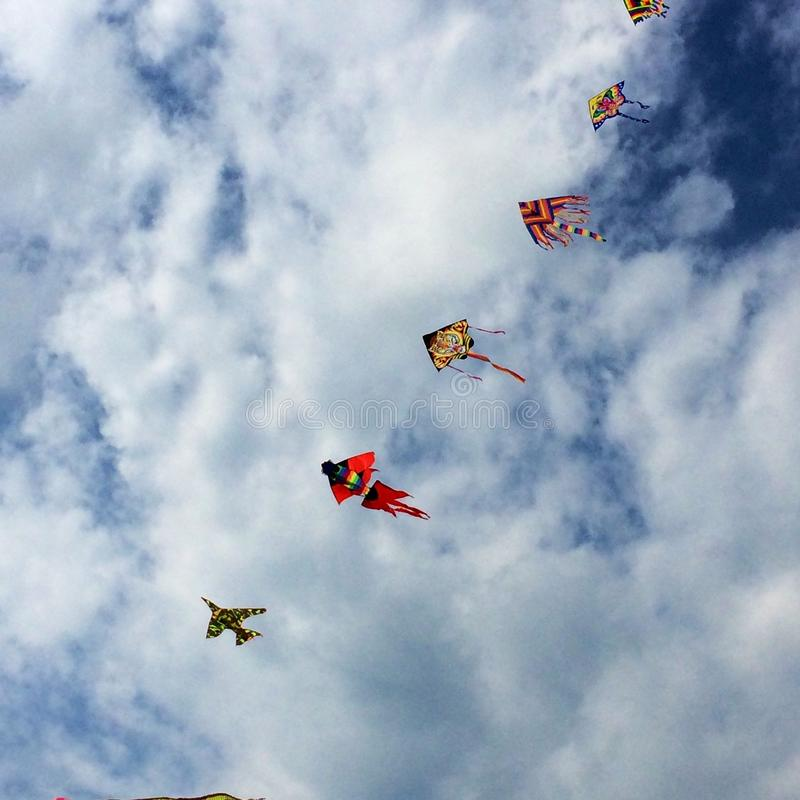 Flying kites in the sky royalty free stock image