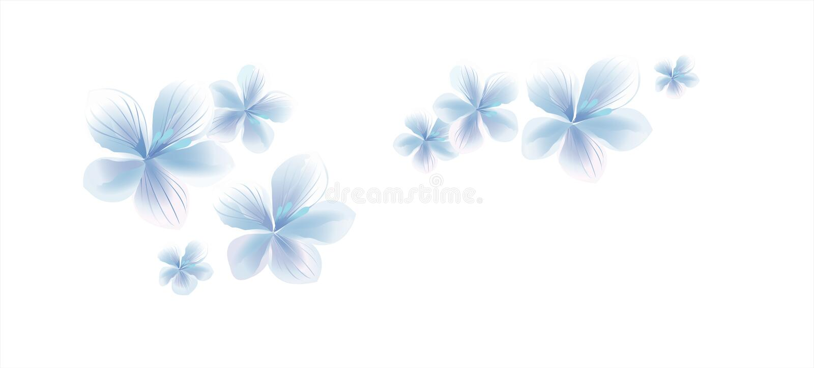 Flying light Blue White flowers on White background. Apple-tree flowers. Cherry blossom. Vector EPS 10 cmyk royalty free illustration