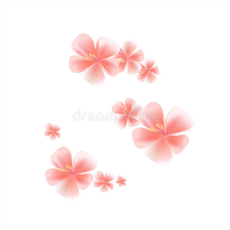 Flying light pink peach flowers isolated on white background. Apple-tree flowers. Cherry blossom. Border. Vector. EPS 10 cmyk royalty free illustration