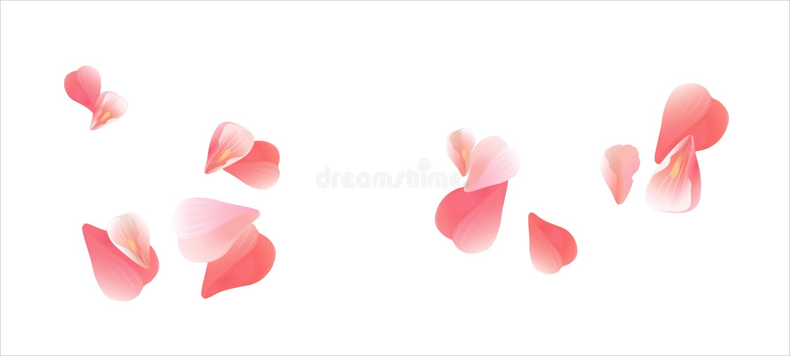 Flying light Pink Red petals isolated on white background. Roses petals. Falling Cherry flowers. Vector EPS 10 cmyk royalty free illustration