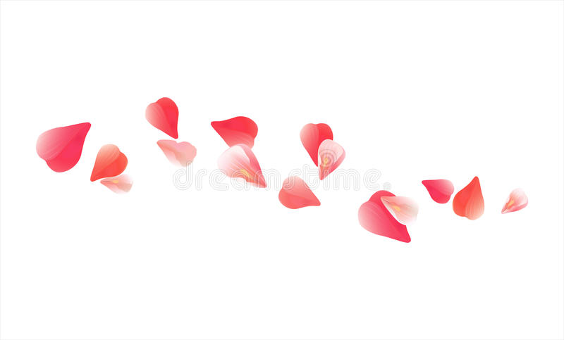 Flying light Pink Red petals isolated on white background. Roses petals. Falling Cherry flowers. Vector EPS 10 cmyk.  royalty free illustration