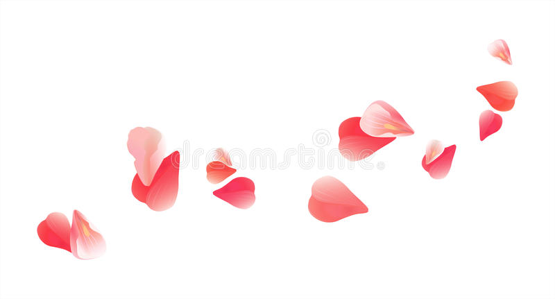 Flying light Pink Red petals isolated on white background. Roses petals. Falling Cherry flowers. Vector EPS 10 cmyk.  stock illustration