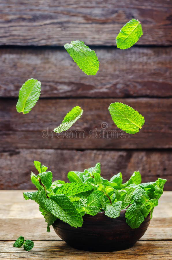 Flying mint. On a wood background. toning. selective focus stock image