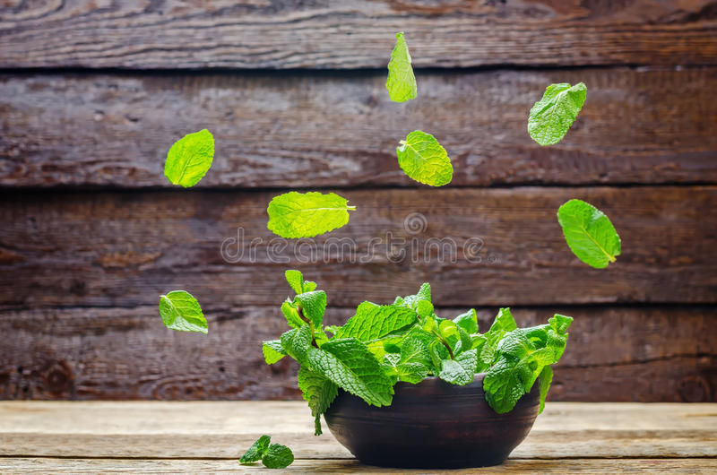 Flying mint. On a wood background. toning. selective focus royalty free stock images