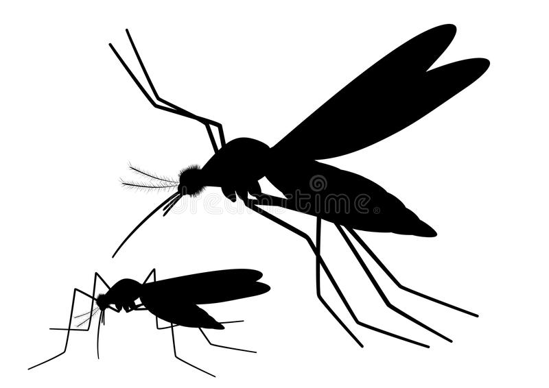 Flying Mosquito Silhouette stock illustration