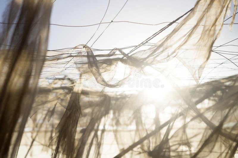 Flying nets. Abandoned banana plantation, El Hierro, El Golfo valley, Spain royalty free stock photography