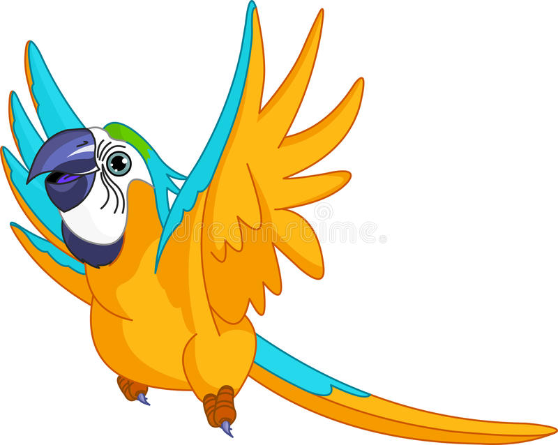 Flying Parrot vector illustration