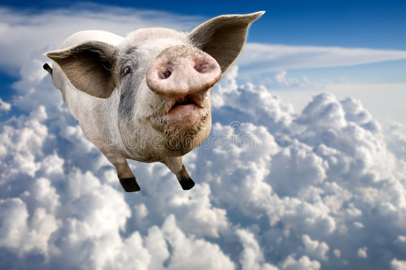 Flying Pig. A pig flying through the clouds in the sky
