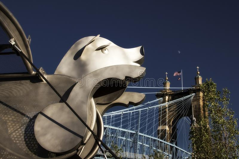 Flying pig sculpture in the Smale Riverfront Park in Cincinnati Ohio stock images