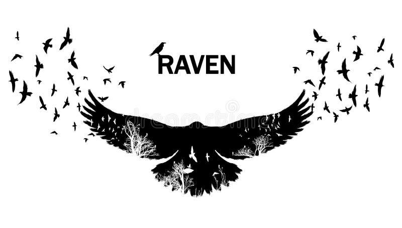 The black raven fluttering. double exposure. stock photos