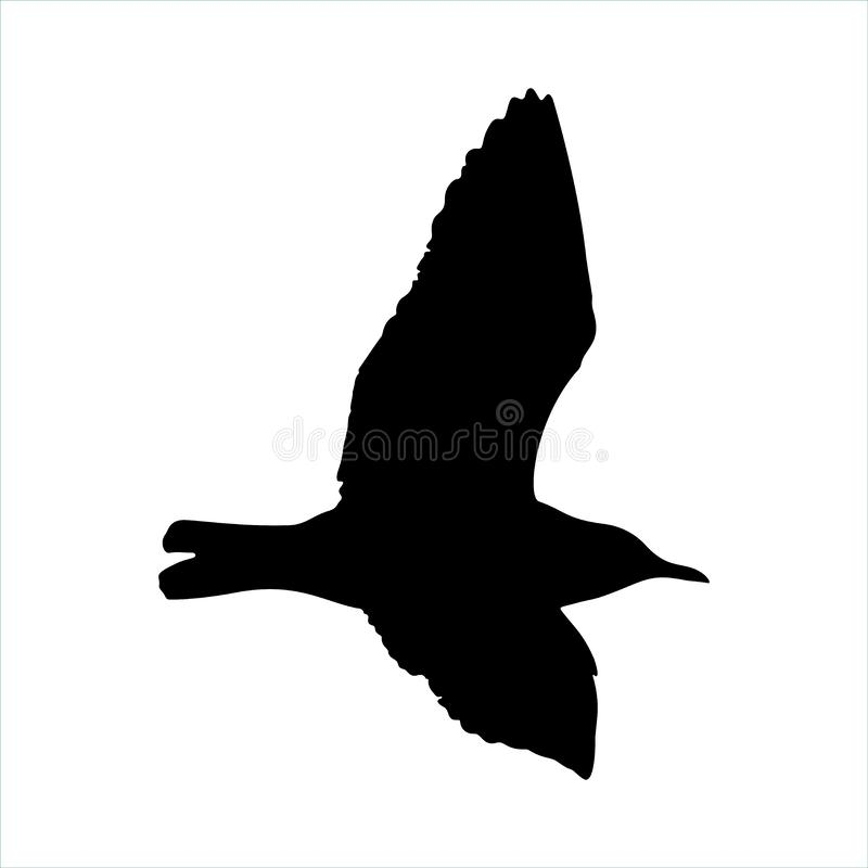 Free Flying Seagull Bird Black Silhouette Isolated On White Background Stock Images - 89156384