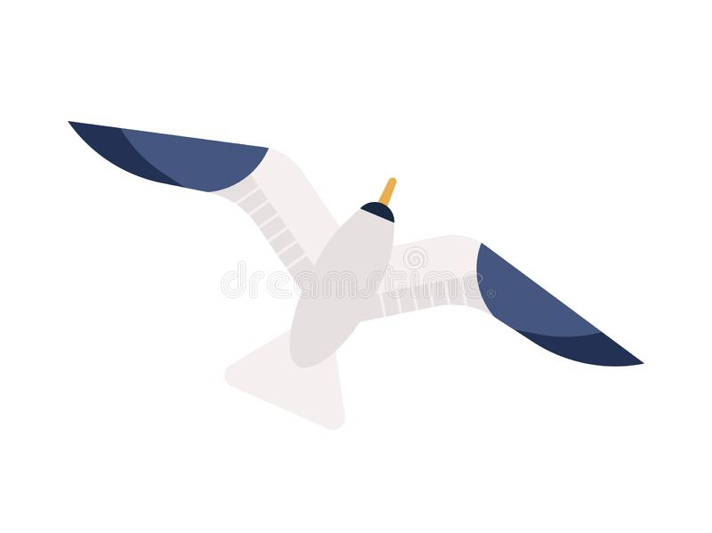 Flying seagull flat vector illustration. Gliding gull with spread wings minimalistic sign. Marine bird, nautical. Wildlife top view. Feathered animal, seabird stock illustration