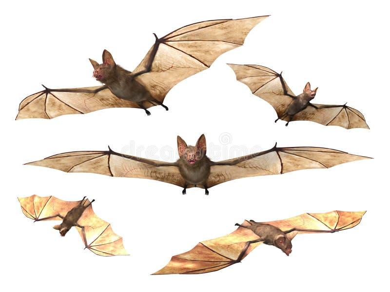 Flying Vampire bats. Isolated on white background
