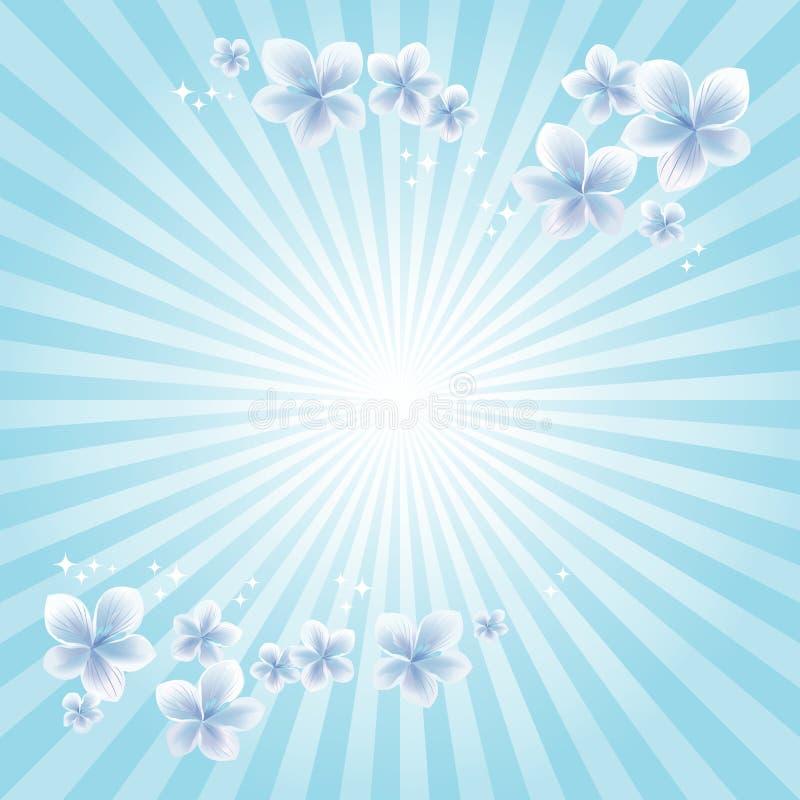 Flying White Blue flowers on light blue rays background. Apple-tree flowers. Cherry blossom. Vector royalty free illustration