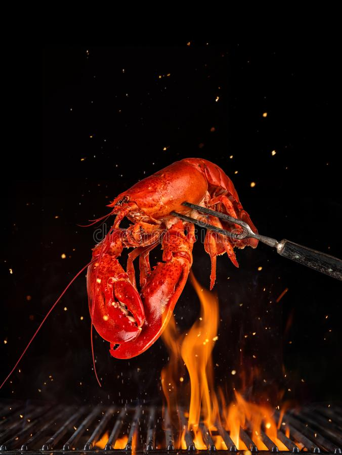Flying whole lobster from grill grid, isolated on black background stock photo