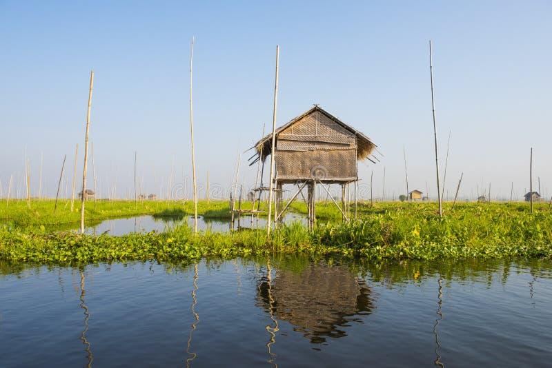 Flytande grönsaksplantager i Inle-sjön i Myanmar arkivbilder